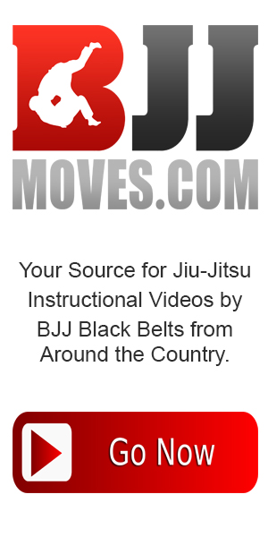 BJJmoves.com 300x600